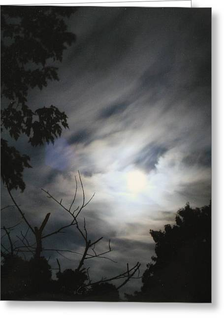 Greeting Card featuring the photograph Night Light by Diane Merkle