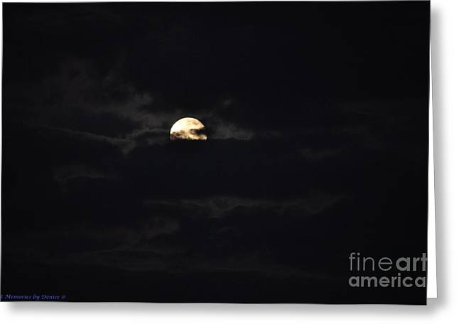 Night Moves 9 Greeting Card