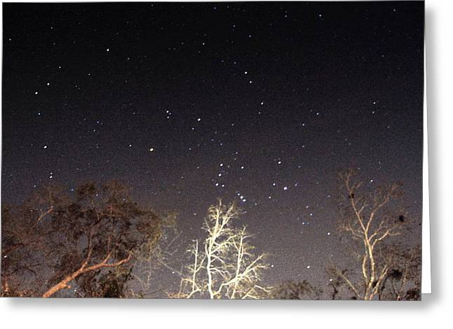 Night Sky Greeting Card by Paul  Wilford