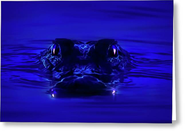 Night Watcher Greeting Card by Mark Andrew Thomas