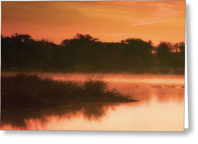 Nightfall Ducks Greeting Card by Glenn Gemmell