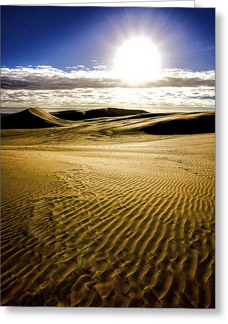 Ninety Mile Beach Greeting Card by Tiarnan Colgan