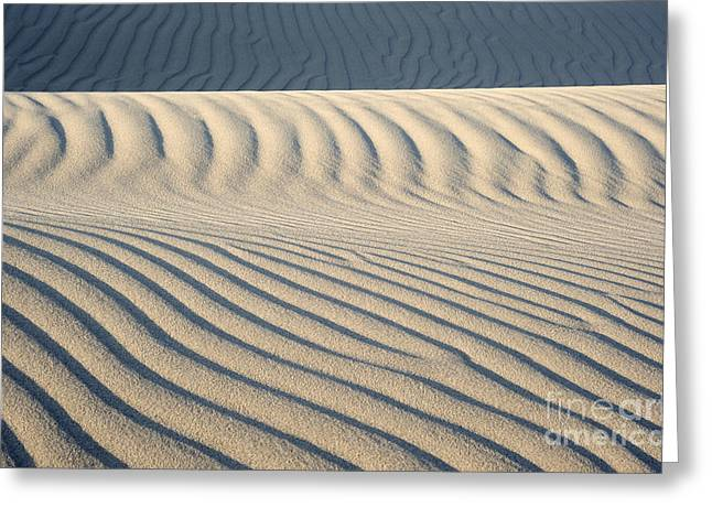 Nipomo Dunes Greeting Card by Ronald Hoggard