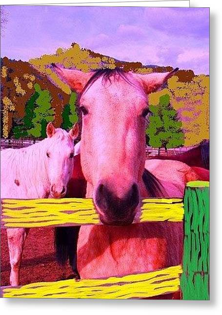 Greeting Card featuring the photograph Nippy by Brenda Pressnall