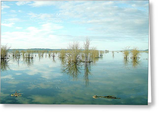 Nisqually High Tide Greeting Card