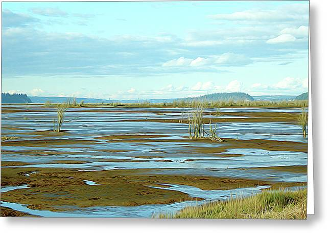 Nisqually Looking North Greeting Card