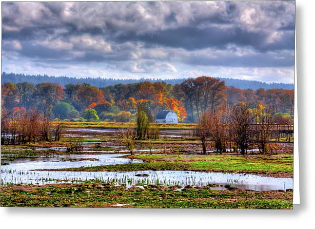 Nisqually Wildlife Refuge P34 Greeting Card by David Patterson