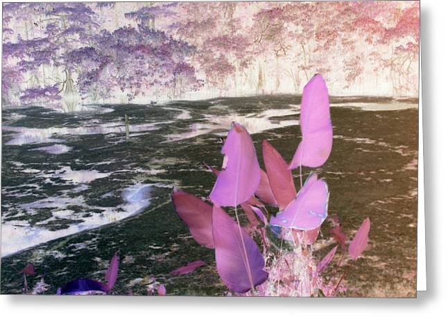 Purple Abstract Greeting Cards - Nite Forest Greeting Card by Florene Welebny