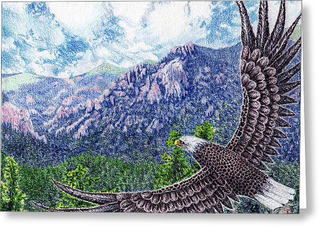 Prisma Colored Pencil Drawings Greeting Cards - No Limits for the Wing Greeting Card by Nils Beasley