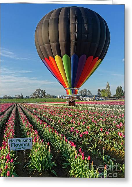 Greeting Card featuring the photograph No Picking Flowers by Craig Leaper