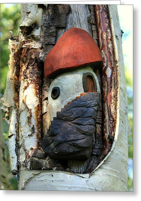 No Place Like Gnome Home Iv Greeting Card by Eric Knowlton