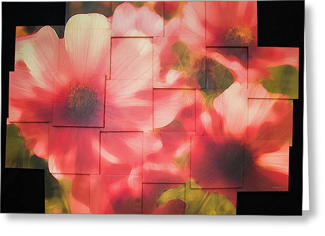 Nocturnal Pinks Photo Sculpture Greeting Card