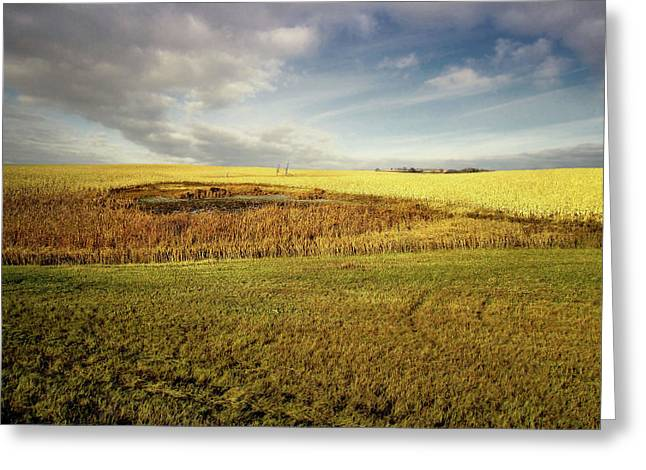 Nodak Field Greeting Card