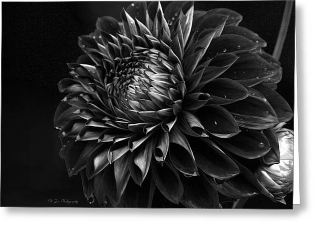 Noir Beauty Greeting Card