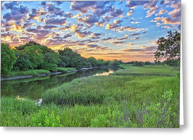 Noisette Rising Greeting Card by Donnie Smith