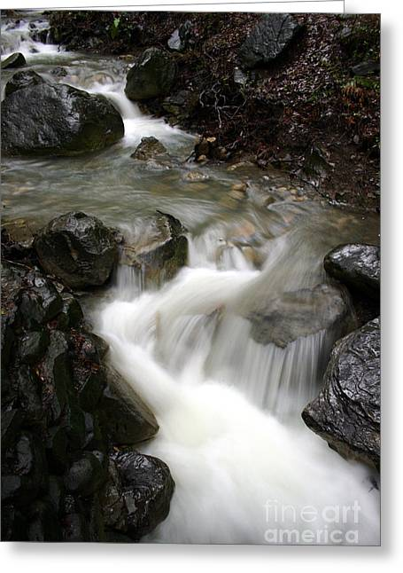 Nojoqui Falls Greeting Card