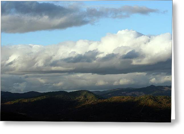 Greeting Card featuring the photograph Norcal Wilds by Holly Ethan