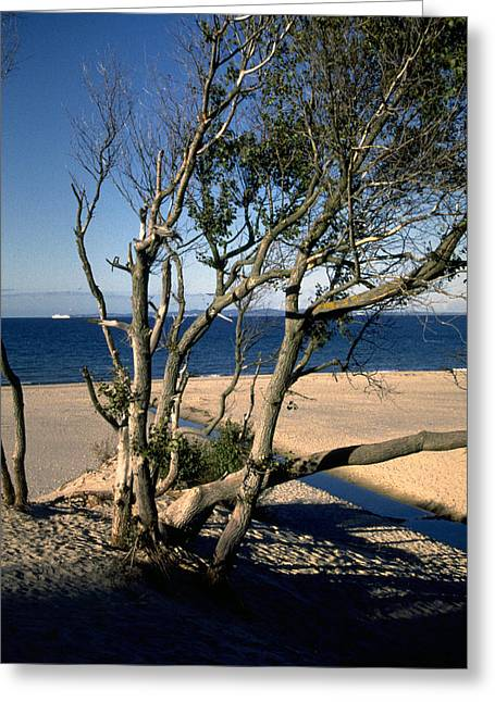 Nordic Beach Greeting Card