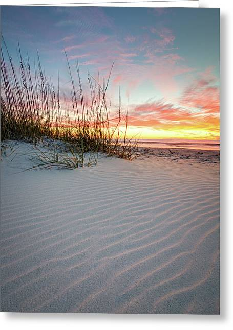 North Beach Dunes Greeting Card by Clay Townsend