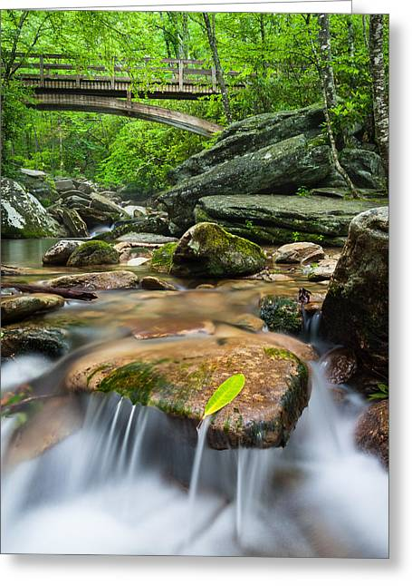 North Carolina Mountain Stream Beneath Tanawha Trail Wooden Bridge Greeting Card by Mark VanDyke