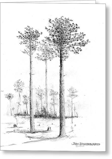 North Carolina- Southern Longleaf Pine Greeting Card
