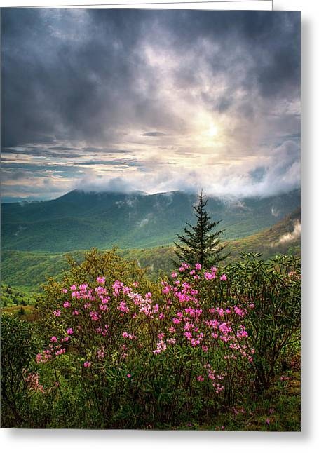 North Carolina Spring Flowers Blue Ridge Parkway Scenic Landscape Asheville Nc Greeting Card