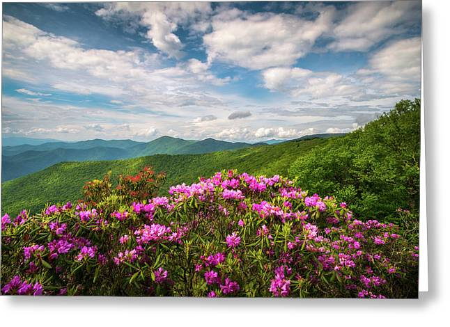 North Carolina Spring Flowers Mountain Landscape Blue Ridge Parkway Asheville Nc Greeting Card