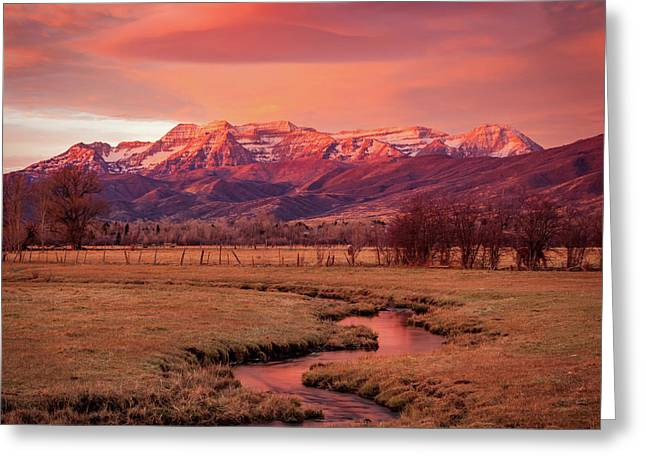 North Fields Scorcher Greeting Card by Johnny Adolphson