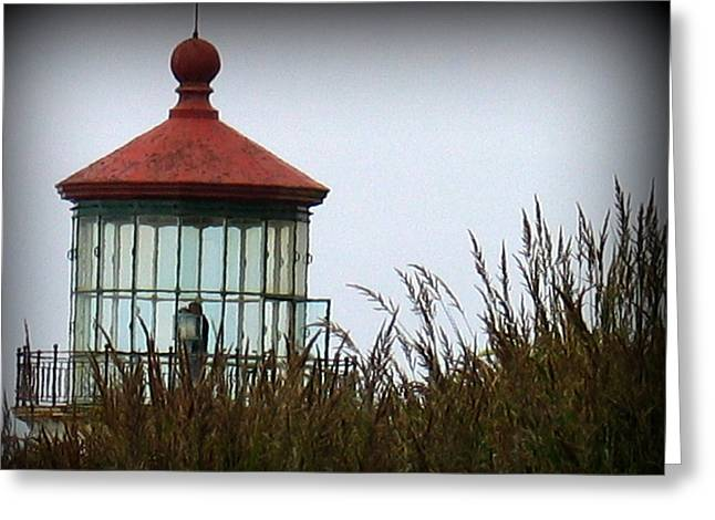 North Head Lighthouse Greeting Card by Mg Blackstock