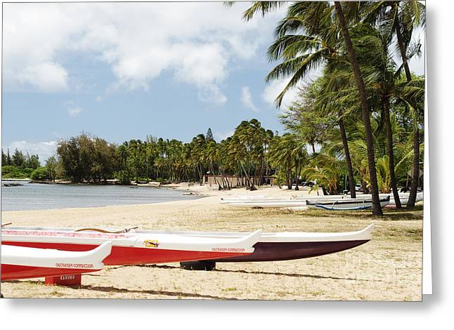 North Shore, Haleiwa Greeting Card by Vince Cavataio - Printscapes