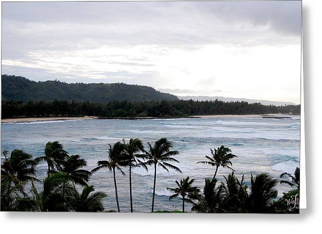 North Shore Greeting Card by Thea Wolff