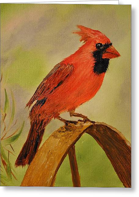 Northern Cardinal Greeting Card by James Higgins