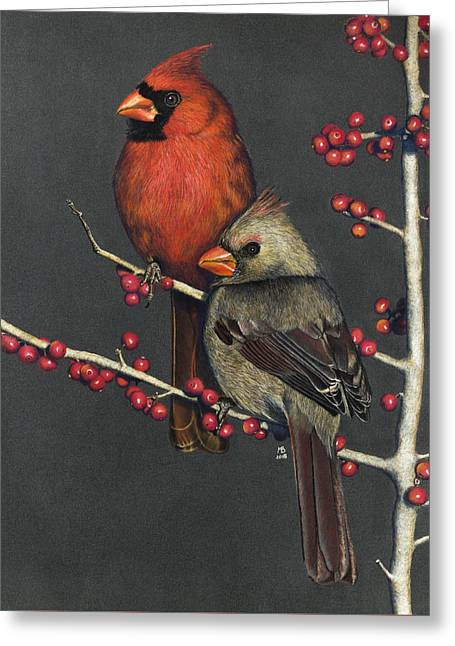Northern Cardinals On Possum Haw Holly Greeting Card