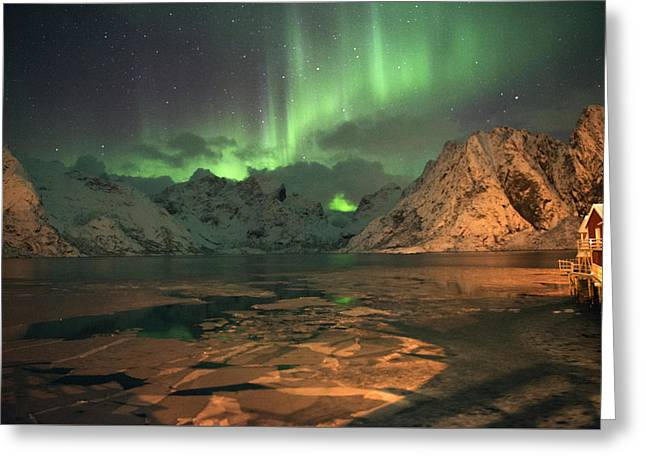 Northern Light In Lofoten, Nordland 1 Greeting Card