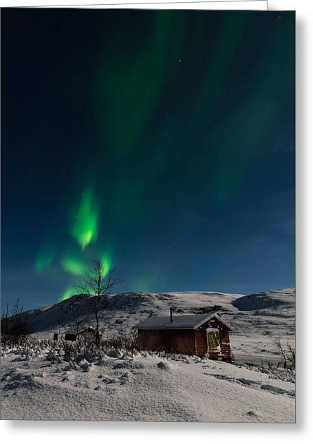 Northern Lights As A Person Greeting Card