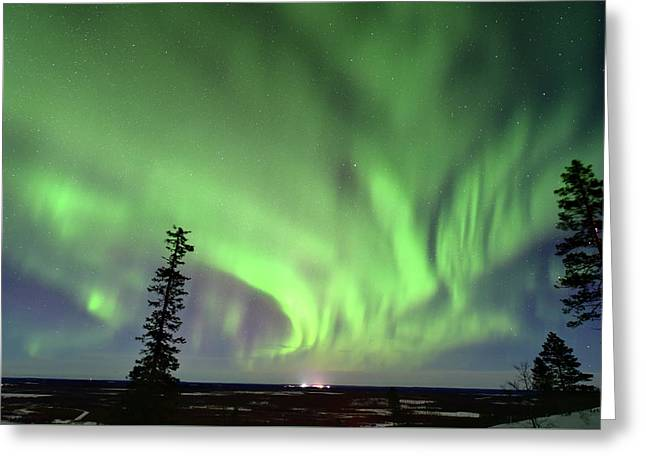 Northern Lights Greeting Card by Edwin Verin