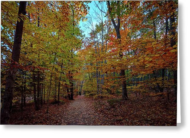 Northern Loop Trail Greeting Card by Rick Berk