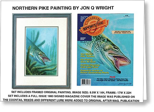 Northern Pike Original Greeting Card by JQ Licensing