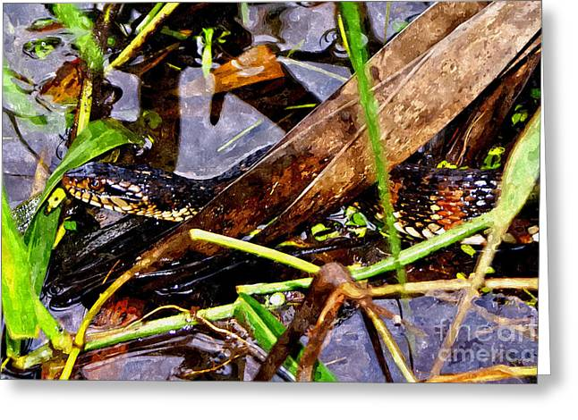 Greeting Card featuring the mixed media Northern Water Snake by Olga Hamilton