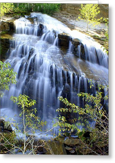 Northfork Falls Greeting Card by Marty Koch