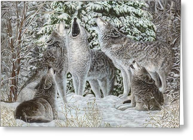 Northland Quintet Greeting Card by Wayne Pruse