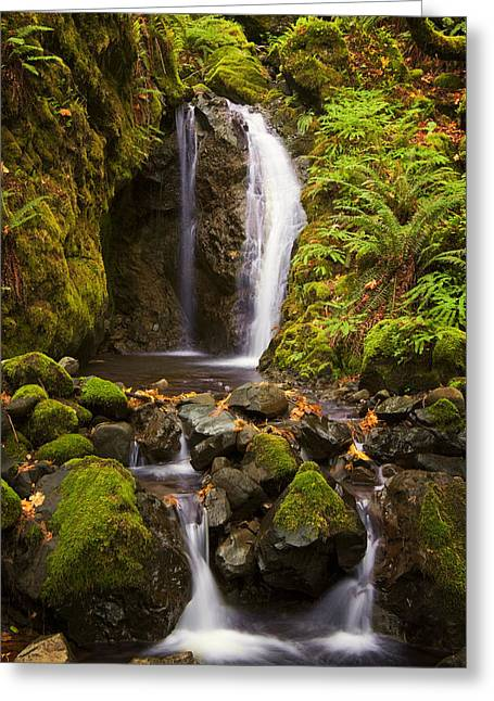 Northwest Paradise Greeting Card