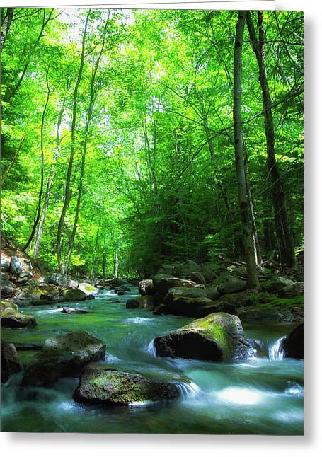 Northwood Brook Greeting Card