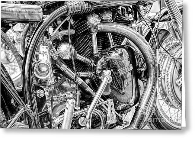Norvin Monochrome Greeting Card by Tim Gainey