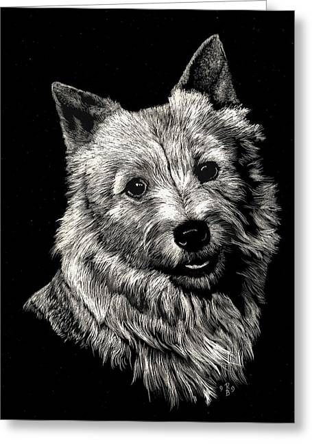 Norwich Terrier Greeting Card