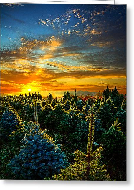 Myhorizonart Greeting Cards - Not Forgotten Greeting Card by Phil Koch