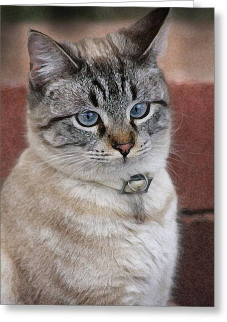 Not Impressed  Greeting Card by Kim Henderson