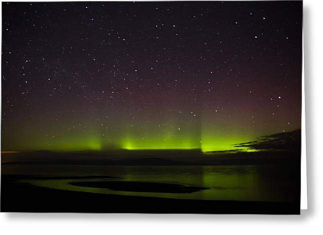 Not So Northern Lights Greeting Card by Randy Hall