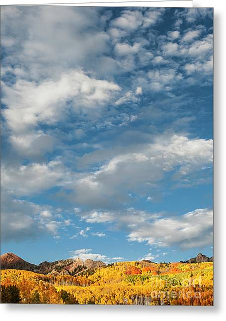 Greeting Card featuring the photograph Nothin' But Blue Skies by The Forests Edge Photography - Diane Sandoval