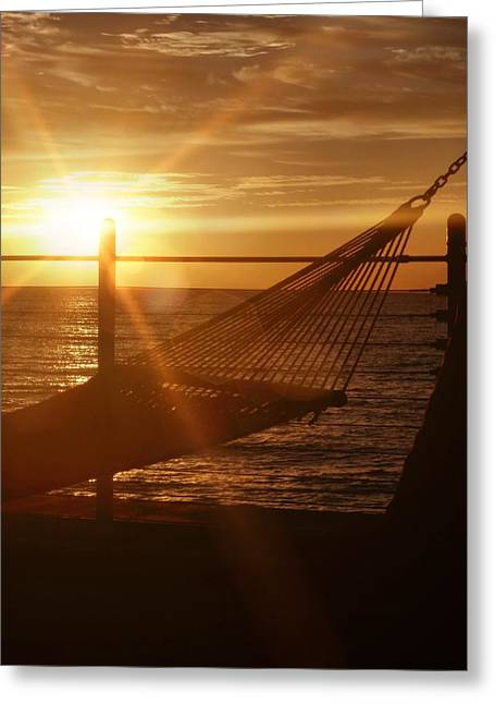 Nothing Gold Stays Greeting Card by JAMART Photography